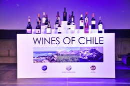 Wines of Chile 2013 Award