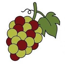 Warren Wines Grapes